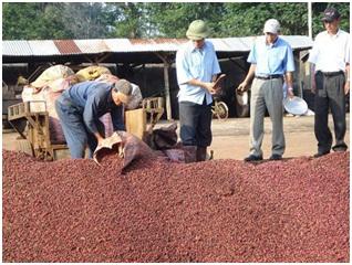 Xuất khẩu nhóm hàng nông sản, thủy sản tiếp tục giảm